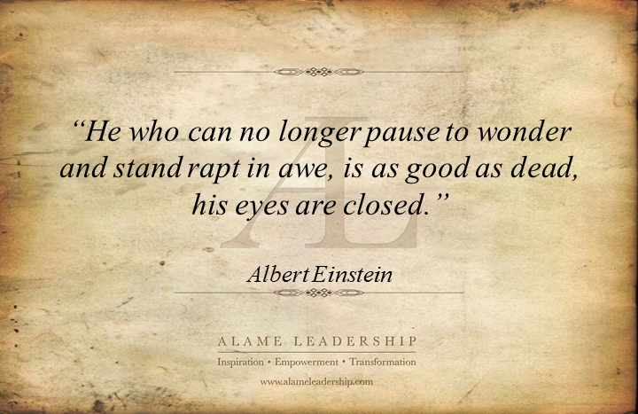 AL Inspiring Quote On Pausing To Wonder And Experience Life