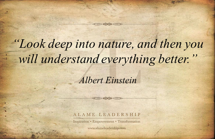 al inspiring quote on wisdom of nature alame leadership